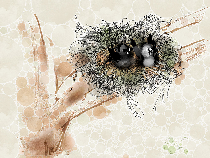 Susanna Hawkes oil painting. Nest. A digital piece of two birds in a nest.